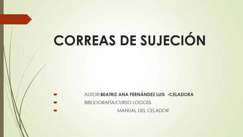 Correas De Sujecion I Congreso Virtual Sicepa Usipa 2021 Sanidad Un Trabajo En Equipo